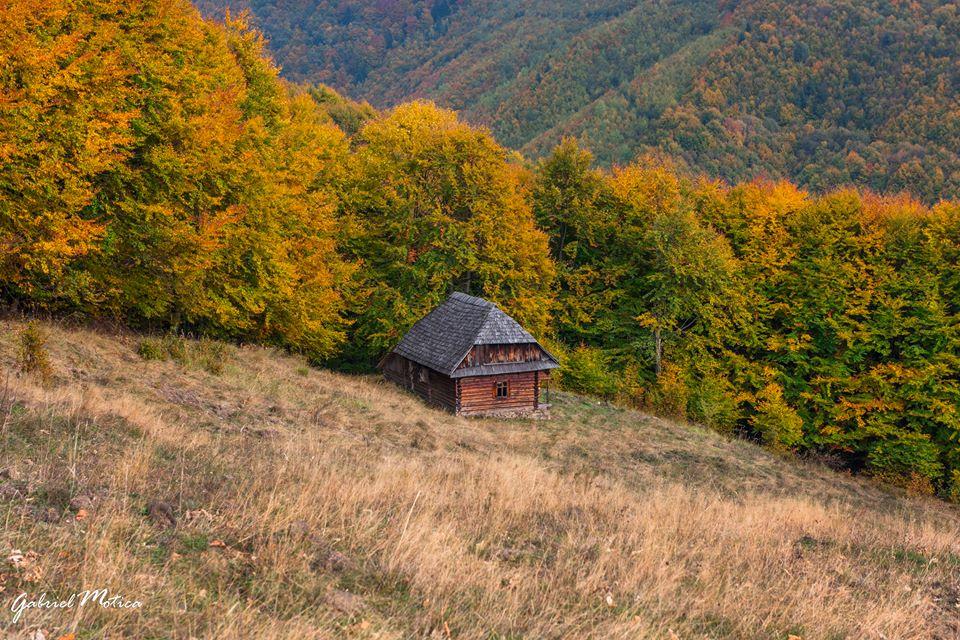 Cum se construia pe vremuri și de ce ar trebui să păstrăm arhitectura tradițională